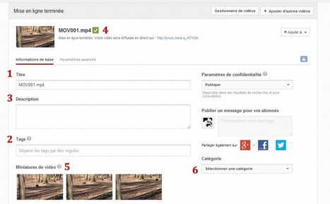 Améliorer le référencement de ses vidéos Youtube: les solutions gratuites | Techniques de VSEO by Pinkanova | Scoop.it