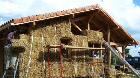 Découvrez ces maisons construites en papier, bois, ou bananier | Conseil construction de maison | Scoop.it
