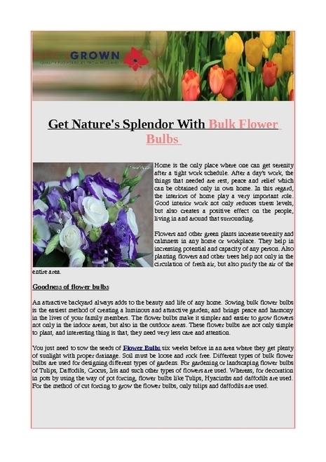 Get natures splendor with bulk flower bulbs - PDF | Flower Bulbs | Scoop.it