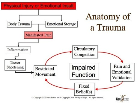 Anatomy of Trauma | Holographic Imprint | Insults and Injuries | BioSync | Scoop.it