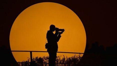 Picture of Life: Fotografia come professione e riscatto sociale - Clickblog.it (Blog) | Notozie fotografiche | Scoop.it