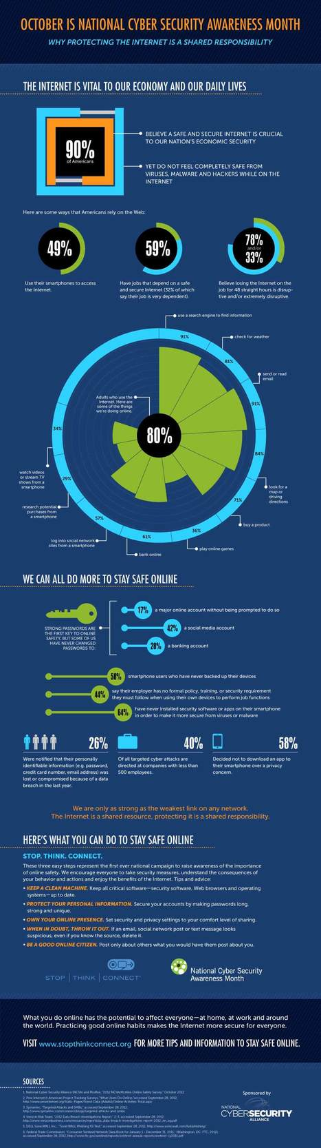Protecting the Internet Infographic | StaySafeOnline.org | A New Society, a new education! | Scoop.it