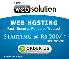Professional SEO Services - Make Your Business At First Place | Live Web Solution | Scoop.it