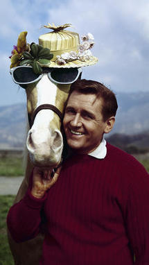 Alan Young, star of 1960s talking horse sitcom 'Mister Ed,' dies at 96 | 1962 - the year | Scoop.it