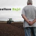 Agriculture Hajri | Pomme de Terre | Vache | fruits | Légumes | Les Vaches | Scoop.it