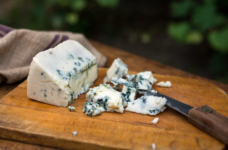When Choosing Cheese, Low-Fat May Not Matter | Health Fitness Nutrition | Scoop.it