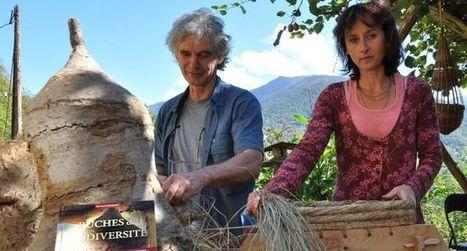Des ruches pour que les abeilles retrouvent leur nature | Le monde des abeilles | Scoop.it