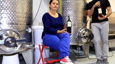 Ce vin de Marseille qui prend de la bouteille - | Le Vin et + encore | Scoop.it