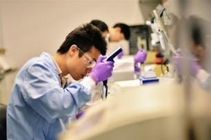 Científicos consiguen frustrar un desarrollo neuronal anormal con una nueva mutación | Salud Visual 2.0 | Scoop.it
