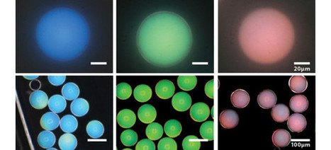 Scientists Discover the Key to Making Paint That Never Fades | Paint Colors | Scoop.it