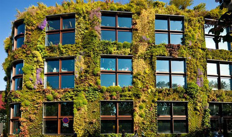 Living Walls Effectively Mitigate Air Pollution | Integrative Design | Scoop.it