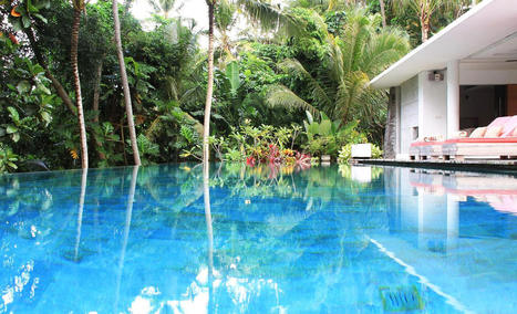Luxury Apartments in Bangalore | Real estate | Scoop.it