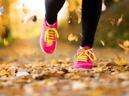 Fall into fitness: We can change with seasons - Sarasota Herald-Tribune   Bushi Kai USA   Scoop.it