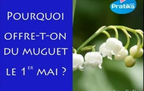 Pourquoi offre-t-on du muguet le premier mai? | La culture française -Ressources FLE | Scoop.it