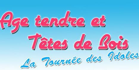 Partir en croisière : Croisières 2014 : dernière édition de Croisière Age Tendre et Têtes de Bois | Destinations-MSC | Scoop.it