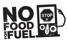 Friends of the Earth: Demand an end to food for fuel | Sustainable Development & International Cooperation | Scoop.it