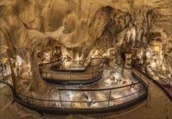 La Caverne du Pont d'Arc : déjà 80 000 billets vendus | Suivi de la demande et des marchés du tourisme | Scoop.it