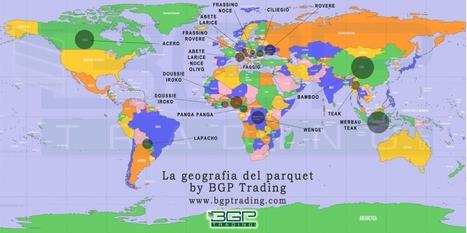 La geografia del parqueti pavimenti in legno | PMI | Scoop.it
