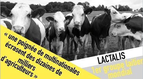 Lactalis : les paysans écrasés par un géant français | Questions de développement ... | Scoop.it
