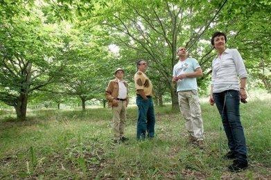 La filière cèpes s'organise en Dordogne | Agriculture en Dordogne | Scoop.it