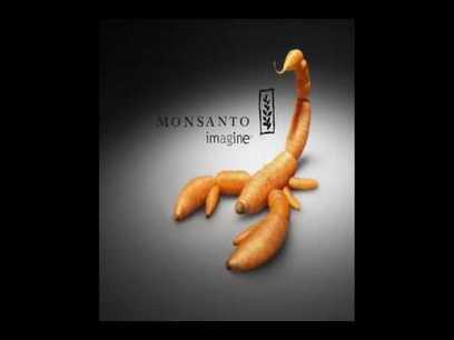 How Monsanto Is Contributing To Our Extinction - GreenMedTV | Society Violence Justice + | Scoop.it