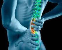 Are you Struggling With Your Back Pain, Chennai | Joint Replacement Surgeon India | Scoop.it