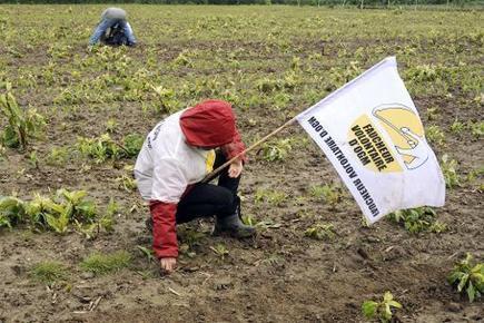 Des ONG mettent en garde l'UE contre le risque d'une pensée unique scientifique - Magazine GoodPlanet Info   Chimie verte et agroécologie   Scoop.it