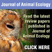Highlights - Journal of Animal Ecology   Ecology's impact on Travel and Leisure   Scoop.it