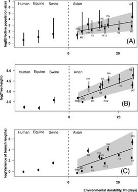 Adaptive Evolution and Environmental Durability Jointly Structure Phylodynamic Patterns in Avian Influenza Viruses | Bioinformatics Training | Scoop.it