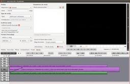 Flowblade: un excellent éditeur vidéo multi pistes – Le coutelas de Ticeman | le foyer de Ticeman | Scoop.it