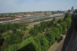 Stadspark op Van Gend & Loos-terrein - Brabants Dagblad | Eetbare Stad | Scoop.it