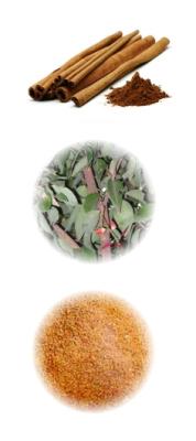 Anti-inflammatory activities of CinnamonExtract | Herbs & Spices | Scoop.it