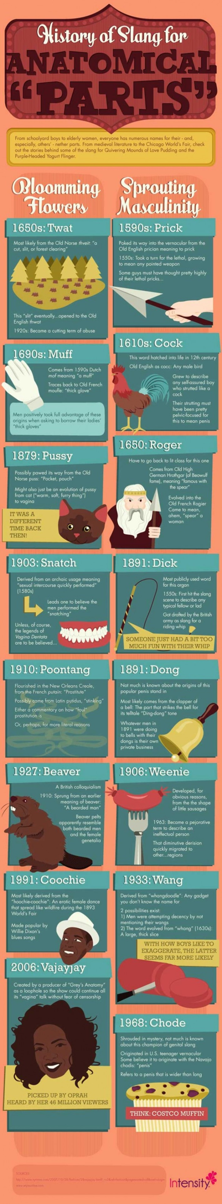 INFOGRAPHIC: The History of Slang for Your Naughty Bits | Sex History | Scoop.it