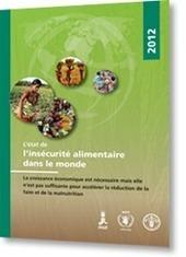 FAO: L' état de l'insécurité alimentaire dans le monde | Sécurité sanitaire des aliments | Scoop.it