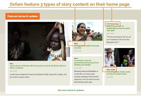 6 Reasons Your Charity Website Doesn't Work | Nonprofit Storytelling | Scoop.it