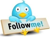 Bogus Twitter accounts bug | ZipMinis: Science of Blogging | Scoop.it