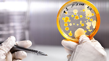 BBC Radio 4 - Human microbes | microBIO | Scoop.it