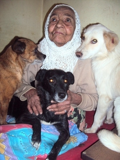 Romanian Grandma Saves Hundreds Of Dogs & Cats From Freezing | Care2 Causes | This Gives Me Hope | Scoop.it