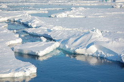 Study: 'Virtually' Certain Impact Of Manmade 'Climate Change Is Observable In Arctic Sea Ice Already Today' | Sustainable Futures | Scoop.it