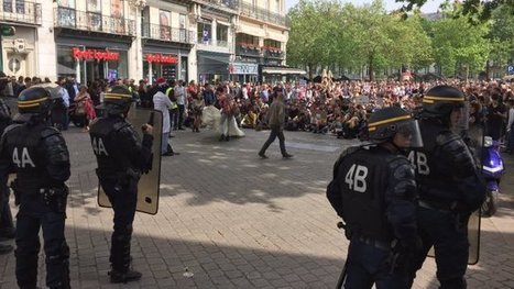Nantes : un millier de personnes défilent contre Monsanto - France 3 Pays de la Loire | NPA 44 - revue de presse | Scoop.it
