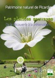 Les plantes sauvages de Picardie : de la découverte à la préservation | Nouvelles Flore | Scoop.it