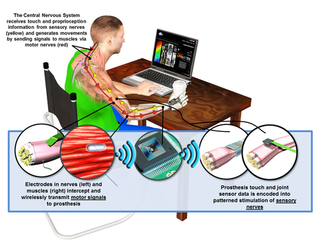 DARPA's HAPTIX project Seeks to Overcome Physical and Psychological Effects of Upper Limb Loss by Restoring Sense of Touch to Amputees | Medical Engineering = MEDINEERING | Scoop.it