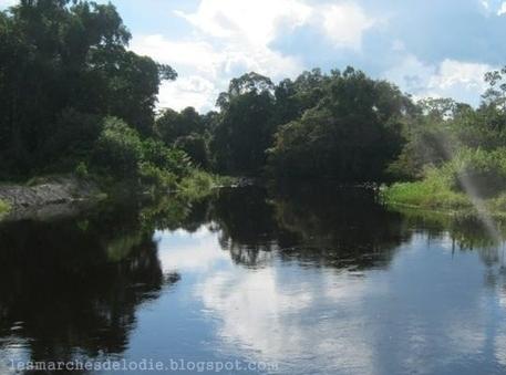 Oveng Lodge... Campement touristique au Cameroun | Cameroun Tourisme, cultures et nature | Scoop.it