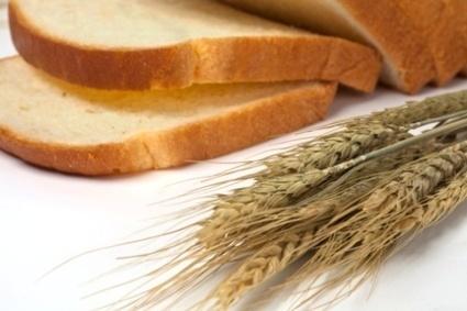 La dieta mediterranea per i celiaci | Celiachia | Scoop.it