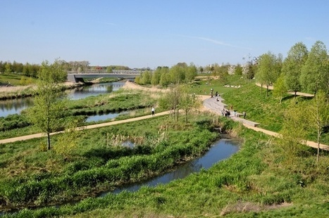 London's Bold Plan to Re-Wild Its Eastern Wetlands | Sustainable Futures | Scoop.it