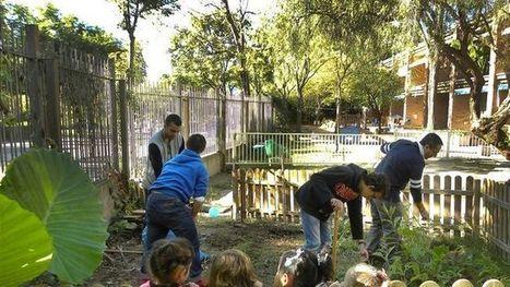 Aires d'inclusió | Recursos per a l'Escola Maregassa | Scoop.it