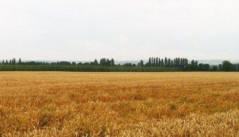 Pour la CR, la protection du foncier est une priorité - Elections Chambres d'agriculture 2013 | Elections chambre d'agriculteurs 2013 : la Coordination Rurale s'engage | Scoop.it