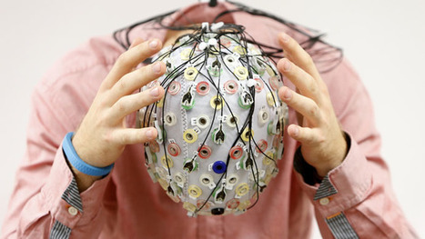 Uploading human brain for eternal life is possible – Cambridge neuroscientist | Natural History, Environment, Science, & Robots | Scoop.it