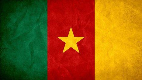 Cameroun : des militants et un journaliste jugés pour avoir évoqué l'alternance politique | Actualités Afrique | Scoop.it