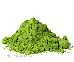 """The """"synergestic miracles of chlorella"""" and its ability to reduce high blood pressure and cerebral stroke lesions 